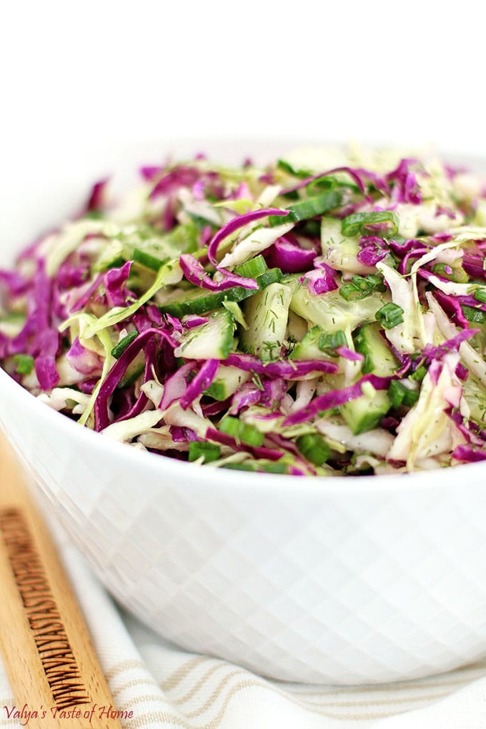 Red and Green Cabbage Cucumber Salad Recipe
